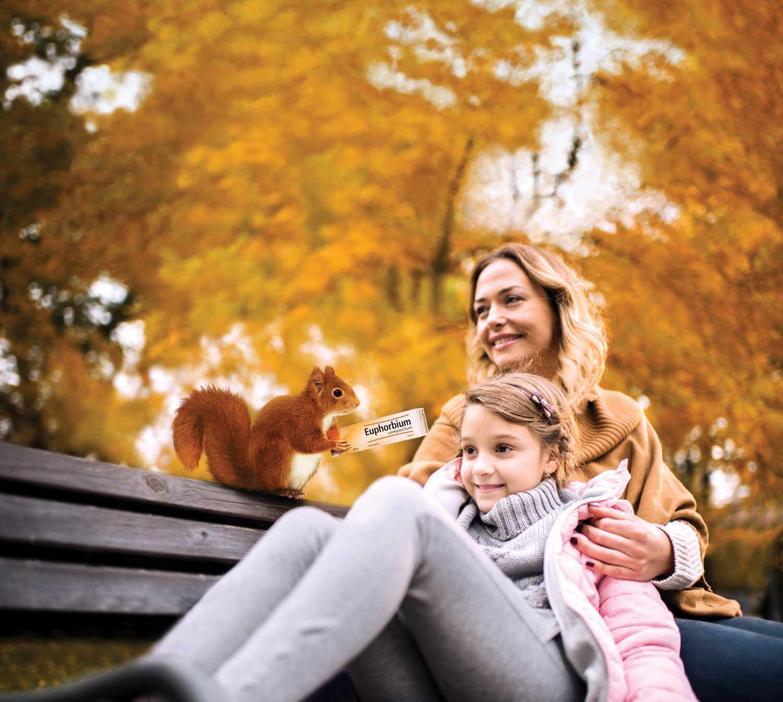 Euphorbium key image for Autumn